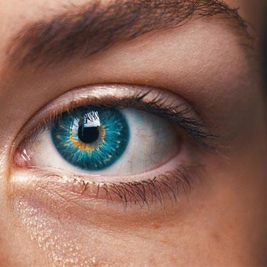 Understanding the Tear Film
